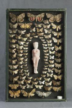 -Laurent Gauthier-  *Boites à insectes.  'La mort'  (technique mixte. 2014)