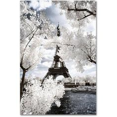 Trademark Fine Art Another Look at Paris IV Canvas Art by Philippe Hugonnard, Size: 22 x 32, White