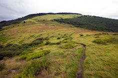 The Appalachian Trail leads towards the top of Whitetop Mountain, in Grayson Highlands State Park in Virginia.