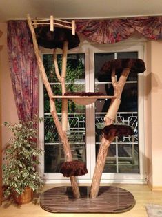 Natur Kratzbaum Katzenbaum Naturkratzbaum Echtholz Sisal Liegemulde Arbre à chat nature Arbre à chat Arbre à chat naturel - Diy Dog Run, Cat Climbing Tree, Getting A Kitten, Diy Cat Tree, Tree Plan, Cat Towers, Sisal, Cat Condo, Cat Room
