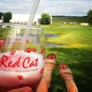 Red Cat Slushie In a standard countertop blender, combine. 2 parts Hazlitt Red Cat 1 part pink lemonade Ice (fill to blender top) Blend to your liking. Party Drinks, Fun Drinks, Yummy Drinks, Alcoholic Drinks, Cold Drinks, Red Cat Wine, Wine Slushie Recipe, Wine Cocktails, Sangria