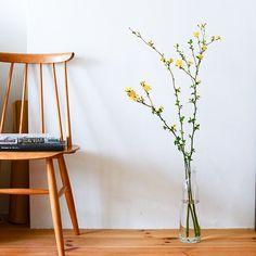 お花と上手に暮らすコツ6 枝ものを飾って、お家に季節感をプラスしよう。