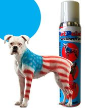 Colored Pet Hair Spray - great way to dress up your dog for Halloween