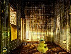 Wo sind denn jetzt hier die Sterne??? #ibes #ibes2019  #bigb #bigbird #cooler #gelber #erpel #enterich #vogel #gelbe #ente #schrader #beckum #yellow #duck #bird #plüschi #plushie #plüschtier #kuscheltier #stofftier #schmusetier #fotografier_dein_kuscheltier Antonio Mora, Artwork, Bird, Stars, Work Of Art, Auguste Rodin Artwork