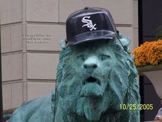 Chicago White Sox World Series 2005 Only the best teams in Chicago get their team hat on the Lion.notice who's missing. Chicago Baseball, Chicago White Sox, White Sox World Series, Chicago Travel, Home Team, Cubs, Lion, Socks