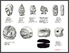 Artifact illustrations Indian Artifacts, Native American Artifacts, Ancient Artifacts, Flint Knapping, Rock Hunting, Stone Age, Native Indian, Ancient History, Native Americans