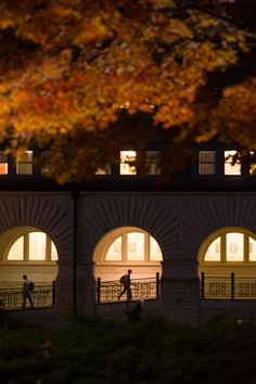 The academic heart of campus: Hale Library.