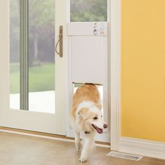 Electronic Pet Door $1,000.00  I want this!!!