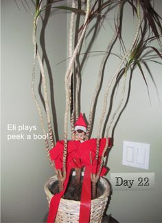 Eli the elf hiding in a tree