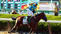 American Pharoah Photos - Victor Espinoza celebrates atop American Pharoah after winning the running of the Belmont Stakes becoming the first horse in 37 years to win the Triple Crown at Belmont Park on June 2015 in Elmont, New York. Univision Noticias, The Belmont Stakes, Preakness Stakes, Image American, Crown Photos, Triple Crown Winners, American Pharoah, Thoroughbred Horse, Racehorse