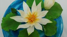 Water lily - Cake by Zdenek