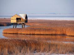 Met deze foto heeft Bert Schuthof de fotowedstrijd van National Geographic Oost-Groningen gewonnen.