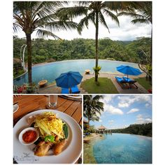 Puri Wulandari is a four-star luxury hotel perched on a ridge above the scenic Ayung river valley and only a 10-minute drive from Ubud.  Click on the link to book online. http://www.balihotelguide.com/booking/hotels/19/puri-wulandari-a-boutique-resort-and-spa.aspx  #baliaccommodation #activities #adventure #baliinfo #balitipsandadvice #tropical #travel #vacation #riverview #nature #balihotels #balivilla #baliresort #balihotelguide #balientertainment #balipackages #balitraditional…