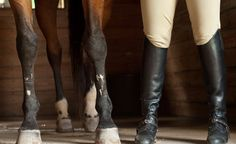 I'm doing this someday:D. Either with my horse or a lesson horse <3