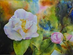 Paintings by Ross Barbera, Watercolor, Acrylic and Digital on Paper - Ross Barbera Watercolor Paintings, Watercolors, Peonies, Original Art, Digital, Rose, Paper, Flowers, Plants