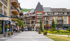 Collingwood is a unique, small town in Ontario with endless appeal in every… Toronto Vacation, Vacation Spots, Ontario, Great Places, Beautiful Places, Places To Travel, Places To Go, Buying A Condo, Camping Spots