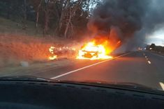 Three men were fortunate to escape uninjured after their car hit a kangaroo on the Monaro Highway and burst into flames, sparking a fast-moving grassfire, a New South Wales fire brigade captain says. Australian Animals, Fire, Kangaroos, Sunset, Gossip, Men, Outdoor, Outdoors, Kangaroo