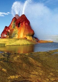 World's Tallest Geyser Located in New Zealand | Lady Knox Geyser – Waiotapu, New Zealand