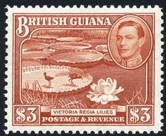 King George VI British Guiana