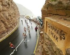 Cape Town Two Oceans marathon:Great White Shark Tours Cycling Events, Ultra Marathon, Great White Shark, Run Around, Cape Town, Oceans, Habitats, Diving, South Africa