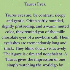 #taurus eyes #taurusteam ♉♉