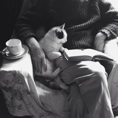The elderly of the house, reading an old book photo by William