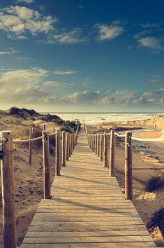 "Amazing work by Marco Oliveira called ""Beach Boardwalk"""