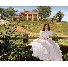 gone with the wind collectibles   Gone With The Wind Scarlett O'hara And Tara From The Wb Photo ...
