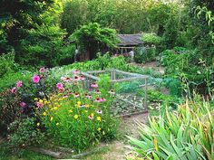What a dreamy permaculture garden....
