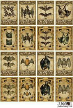 Victorian Bats on a Digital Printable Collage Sheet Imprimibles Halloween, Vintage Borders, Vampire Bat, Halloween Art, Halloween Festival, Collage Sheet, Illustrations, Creepy, Artsy