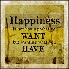 Image result for happy is not having what you want, but wanting what you have