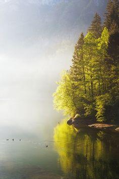 0rient-express:  Misty Lake| byDavide Arizzi.