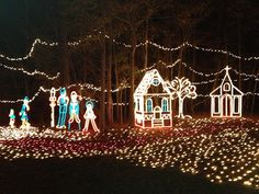 Holiday Lights on the River at Saluda Shoals Park | Columbia ...