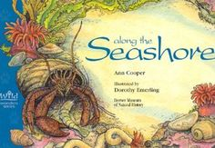 """Get out your sunscreen and flippers and pull out your copy of """"Along the Seashore"""" By Ann Cooper.  You'll learn lots about this special place.  It features detailed and captivating illustrations by Dorothy Emerling."""