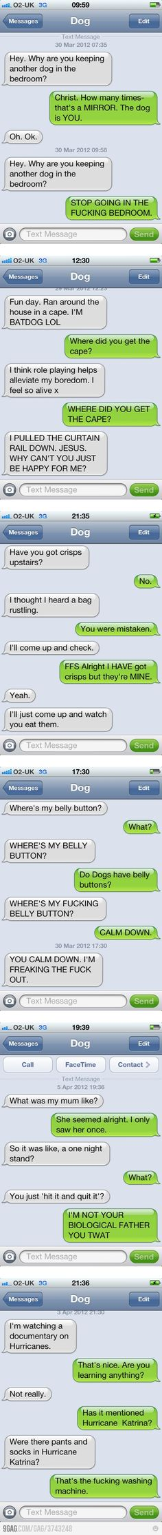 Text message from dog....hahahahaha!