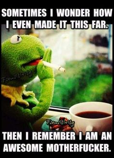 Image about kermit memes funny adult in quotes & text by Funny Kermit Memes, Funny Relatable Memes, Funny Jokes, Funny As Hell, Haha Funny, Hilarious, Funny Stuff, Work Memes, Work Humor