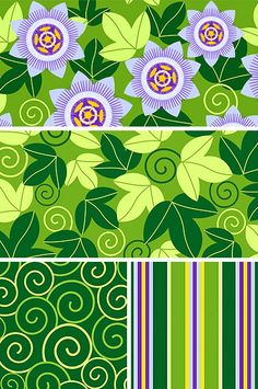passion flower | pattern + coordinates | © wagner campelo