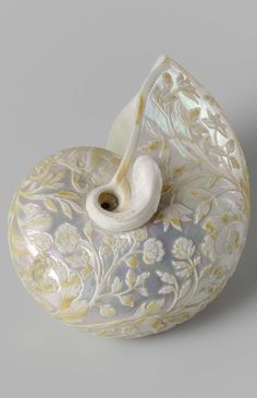 Nautilus shell carved with floral scrolls, by Cornelis Bellekin, 1650 - 1700 текстура на перламутре Art Nouveau, Vintage Accessoires, Nautilus Shell, Shell Art, Objet D'art, Oeuvre D'art, Belle Photo, Sea Shells, Creations