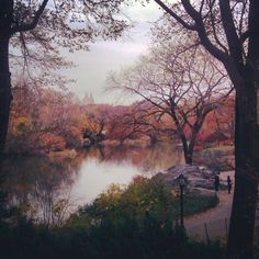 Autumn in Central Park NYC