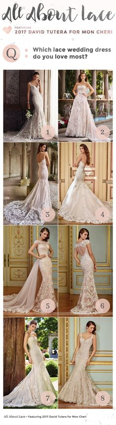 The 2017 David Tutera Wedding Dresses for Mon Cheri collection evokes romance and femininity with stunning lace designs.