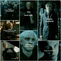 The life of Draco Lucius Malfoy By:Adel Ožanová