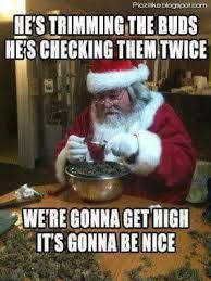 Get your laugh on to these 45 Seriously Funny Christmas Memes! Weed Jokes, Weed Humor, 420 Memes, Medical Marijuana, Drug Memes, Stoner Quotes, Stoner Humor, Comic Cat, Funny Animal Humor