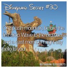 try it! it works!  #Disneyland #dlrsecrets