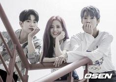 Kpop Memes, Funny Memes, K Pop, Korean Girl Groups, Boy Groups, Nct Doyoung, Got7 Jinyoung, Jaehyun Nct, Korean Bands