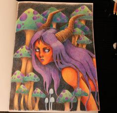 Color pencil drawing, Faber Castell and Lyra, Red satyr