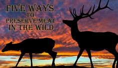 Five Ways To Preserve Meat In the Wild
