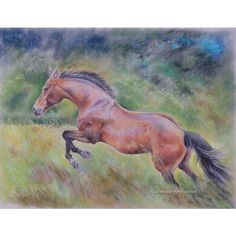 HORSE, Original pastel drawing Hand drawn, Equestrian Art, Jumping... (650 PLN) ❤ liked on Polyvore featuring home, home decor and wall art