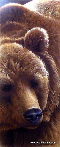 Jerry Gadamus Grizzly Bear