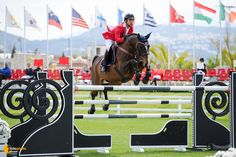 Qrack de la Love - Gold Tour 1,45 Ranking #equestrian #horse #horses #horsejump #competition #equine #chile #equitacion #horserider #showjumping #valencia #españa #spain #MediterraneanTour2015 #met2015