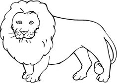 Jungle Animal Coloring Pages 20 Pictures
